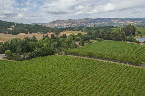 Meadowbrook Farms, 4120 Dry Creek Road, Napa, California, CA 94558, United States of America – £11.7 million ($14.9 million or €14 million or درهم‎‎54.7 million) – For sale through Jill Levy of Heritage Sotheby's International Realty