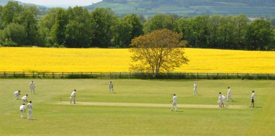An unusual extra is a cricket pitch that is used by local teams