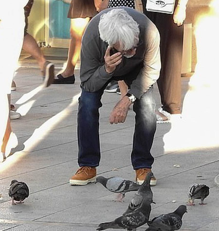 Pigeon Bernie – Bernie Ecclestone befriends a flight of pigeons in Dubrovnik, Croatia with Spice Girl Geri Halliwell – Bernie Ecclestone finally finds himself some 'friends'; Prince Charles talks to plants, Bernie Ecclestone talks to pigeons.