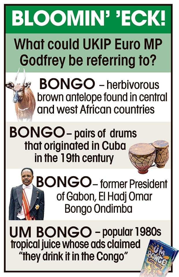 """Some definitions of the word """"bongo"""""""