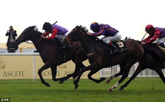 Estimate romps home in the Gold Cup at Royal Ascot 2013