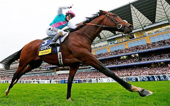In October, the racing world said a fond farewell to Frankel, undoubtedly one of the finest racehorses ever after 14 races. Our man in the know, The Tout, celebrated him repeatedly in our columns and at stud he'll be worth at least £100 million.