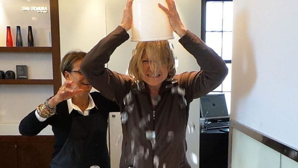 Martha Stewart is one of many to have taken the ice bucket challenge