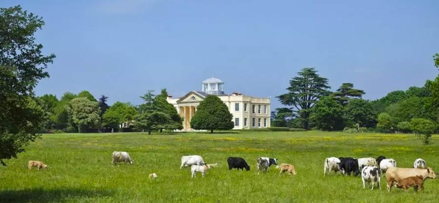 """Polly Put The Kettle On – £10 millon for Newtown Park Estate, Portmore, Lymington, New Forest, Hampshire, SO41 5RN, United Kingdom through Knight Frank – Palladian mansion that was home to Charles Burnett III, the driver of the """"fastest kettle in the world,"""" for sale £10 million after his death in a helicopter accident."""