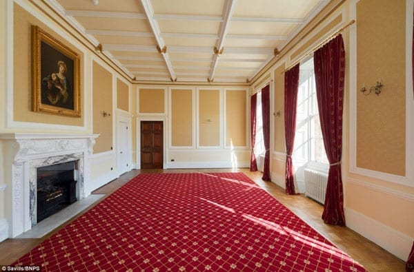 One of many impressive reception rooms