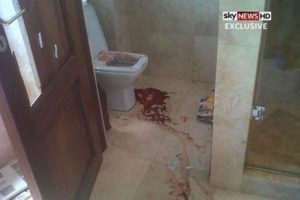 The blood spattered bathroom as shown on SKY News