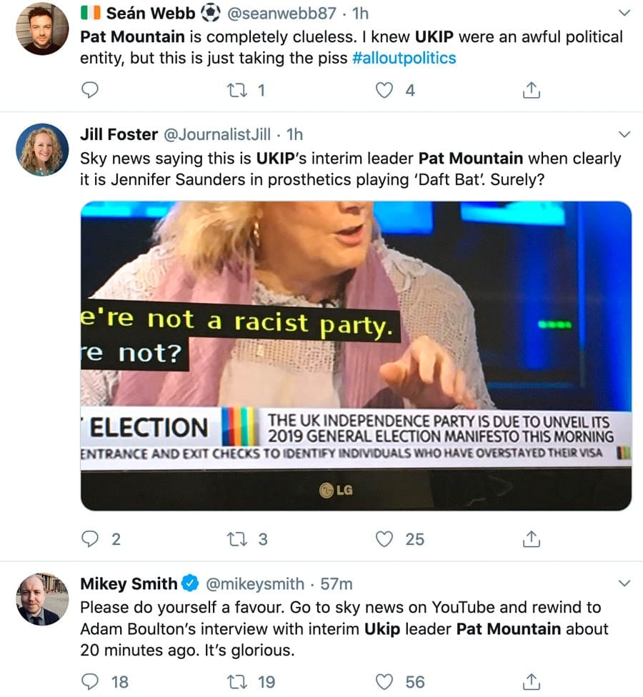 "Pat Mountain (AKA 'Pat The Prized Pillock' and 'Someone's Nan') – UKIP's interim leader in December 2019, Pat Mountain is a Brighton based berk with no idea what a constituency is. She thinks Gerrard Batten ""brave."""