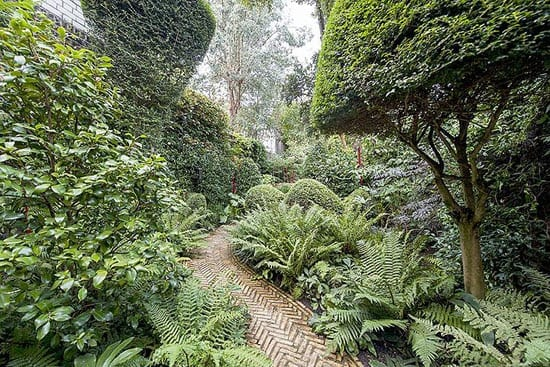 The 98 foot deep rear garden features box hedging, magnolia ,clipped bays and tree ferns