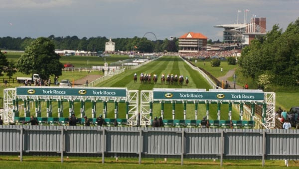 The Tout is looking forward to this weeks racing at York