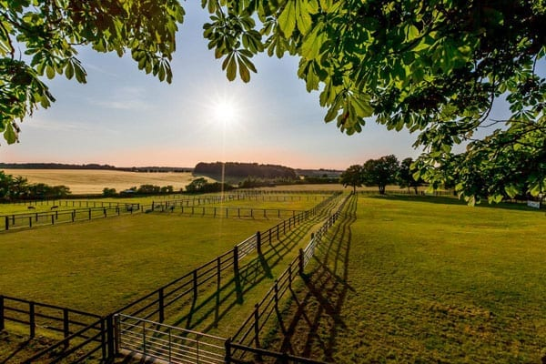 There are nearly 15 acres of paddocks