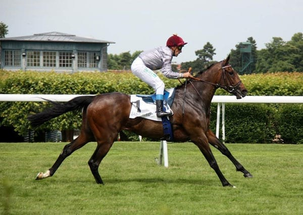 A trainer on Treve - Victoria Haigh