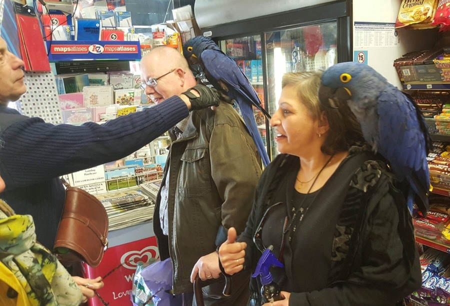 Hero of the Hour – Yasmita Mulji – The Steeple Times salutes community hero and Chelsea newsagent Yasmita Mulji of P. Josiah Newsagents, 101 Fulham Road, London, SW3 6RH. Telephone: +44 (0) 20 7584 2379.