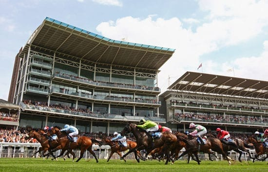 The York Ebor Festival 2013 looks set to provide some great racing