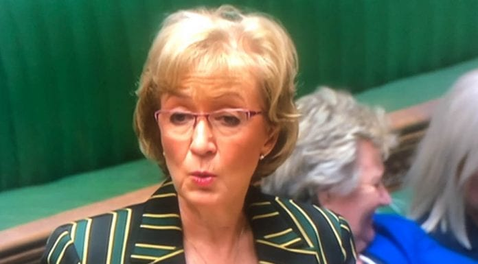 """The Pizza Prat – Andrea Leadsom MP – Leader of the House Andrea 'Loathsome' Leadsom's """"pizza club"""" is indicative of how low the British political classes have stooped."""