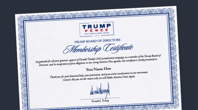 Board of The Trump – Join The Donald's board of directors for $100