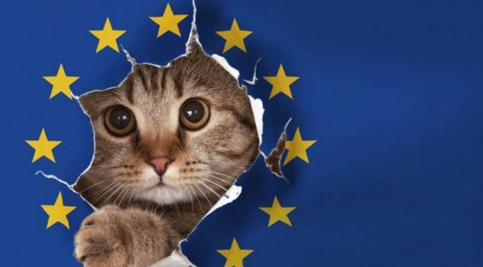 A Cat Called Brexit – France's EU minister names her cat 'Brexit' – That France's EU minister has amusingly named her cat 'Brexit' sums up what a joke this whole process has become.