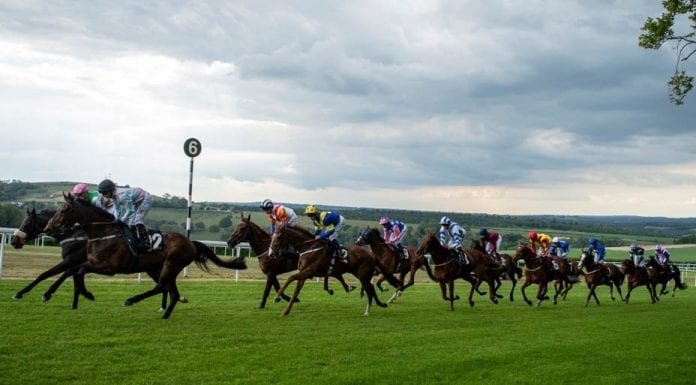 Runners & Riders – Friday 2nd August – The Steeple Times' horse racing tips with an analysis of the top tipsters and their selections for Glorious Goodwood.
