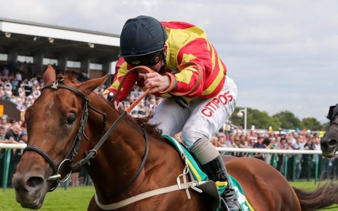 Runners & Riders – Horse racing tips for Saturday 14th September 2019 – The Steeple Times' horse racing tips with an analysis of the top tipsters and their selections for today's racing at the St Leger Festical at Doncaster.