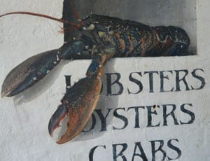 Review – Whitstable Oyster Fishery Company Fish Restaurant, The Royal Native Oyster Stores, Horsebridge, Whitstable, Kent, CT5 1BU. Telephone: +44 (0) 1227 276856 – The Steeple Times