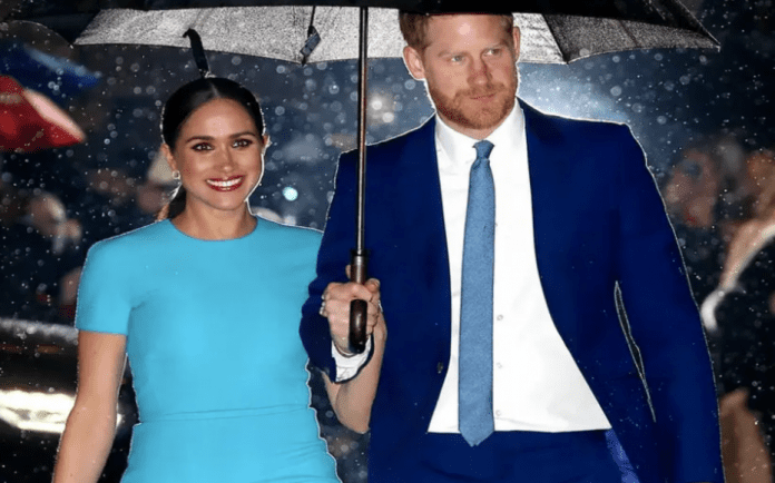 Dumb & Dumber – Duke and Duchess of Sussex score yet another own goal – The Duke and Duchess of Sussex, in stoking a new war with the press, have yet again proved themselves to be ridiculous attention seekers just prior to the commencement of their case against Associated Newspapers.