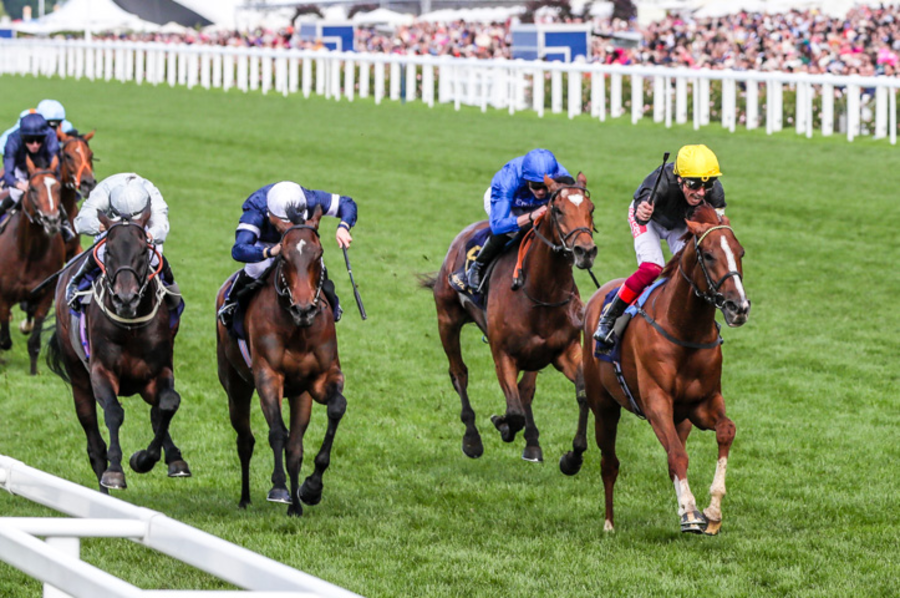 Runners & Riders – Gold Cup Day at 'Royal Ascot At Home' – 'The Steeple Times' analyses the selections for a somewhat damp Gold Cup Day at 'Royal Ascot At Home' – very much a day to stay indoors and watch Stradivarius, Frankie Dettori and Sir John Gosden.