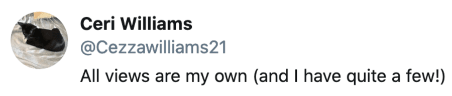 A Life in a Sentence – Twitter handles summing up lives – Matthew Steeples finds amusement in Twitter handles; a life in a sentence can be found on some of the best profiles.