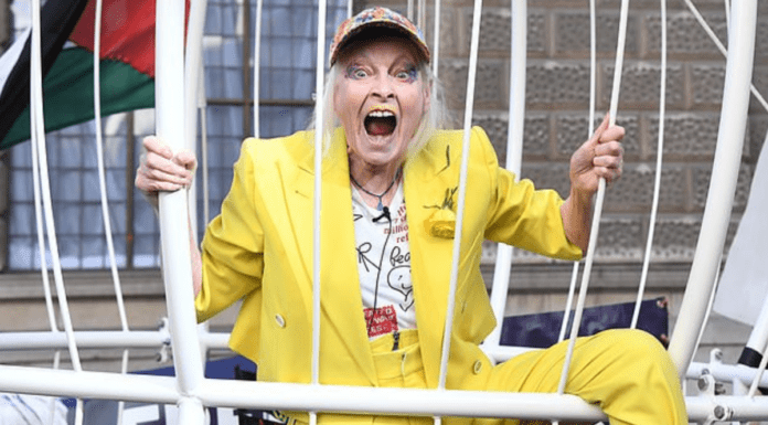 "Wally of the Week – Dame Vivienne Westwood – Fruitcake Dame Vivienne Westwood behaves as normal during a BBC News interview and declares the media ""morons."""