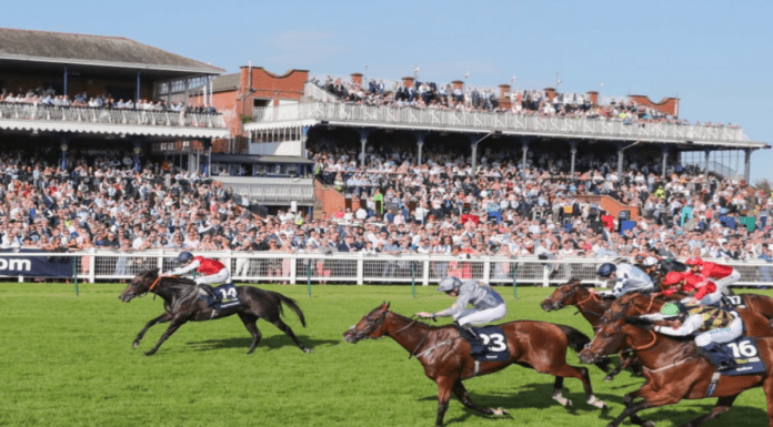 Coming up for Ayr – Ayr Gold Cup Handicap, 19th September 2020 – 'The Steeple Times' analyses the top picks for today's Ayr Gold Cup Handicap and opts for a tidy priced 28/1 option.